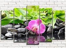 Модульные картины с орхидеями